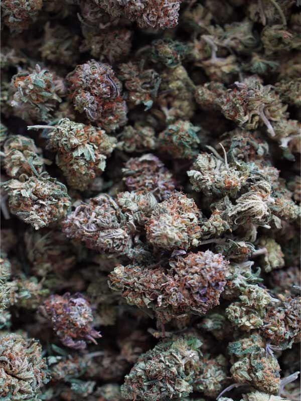 CBG Aroma flower