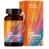 broad-spectrum-CBD-Gummies-750mg-sool-1